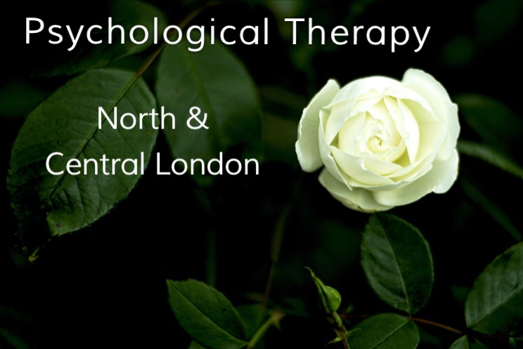 Dr Rose Practice clinical psychologist therapy service north London central London psychotherapy psychotherapist counsellor counselling clinic CBT ACT mindfulness cognitive behavioural therapy N1 N2 N3 N6 N12 N19 N20 NW1 NW3 NW6 NW7 NW11 Islington Camden archway crouch end muswell hill East Finchley temple fortune golders green hampstead garden surberb Barnet Kings Cross Angel northern line Totteridge and Whetstone Woodside Park Tufnell Kentish town mornington crescent Mill Hill